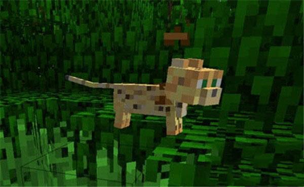 我的世界 豹猫怎么驯服?