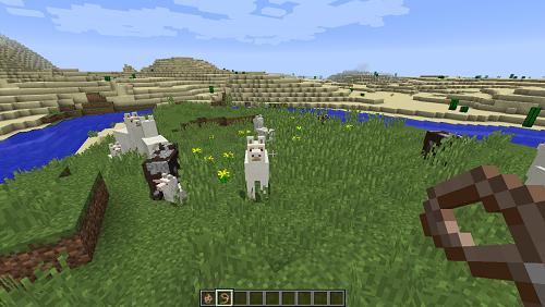 羊驼 我的世界羊驼怎么驯服?