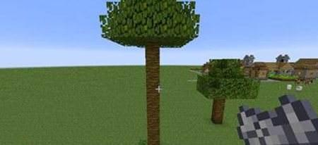 我的世界如何种植植丛林木与深色橡木?如何直接种植?