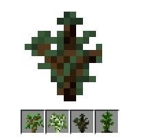 我的世界各类树苗属性攻略
