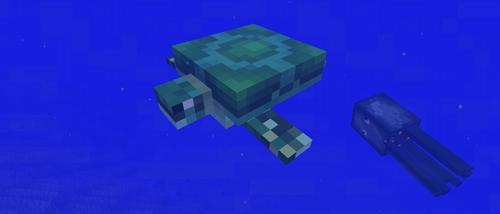 海龟蛋怎么获得