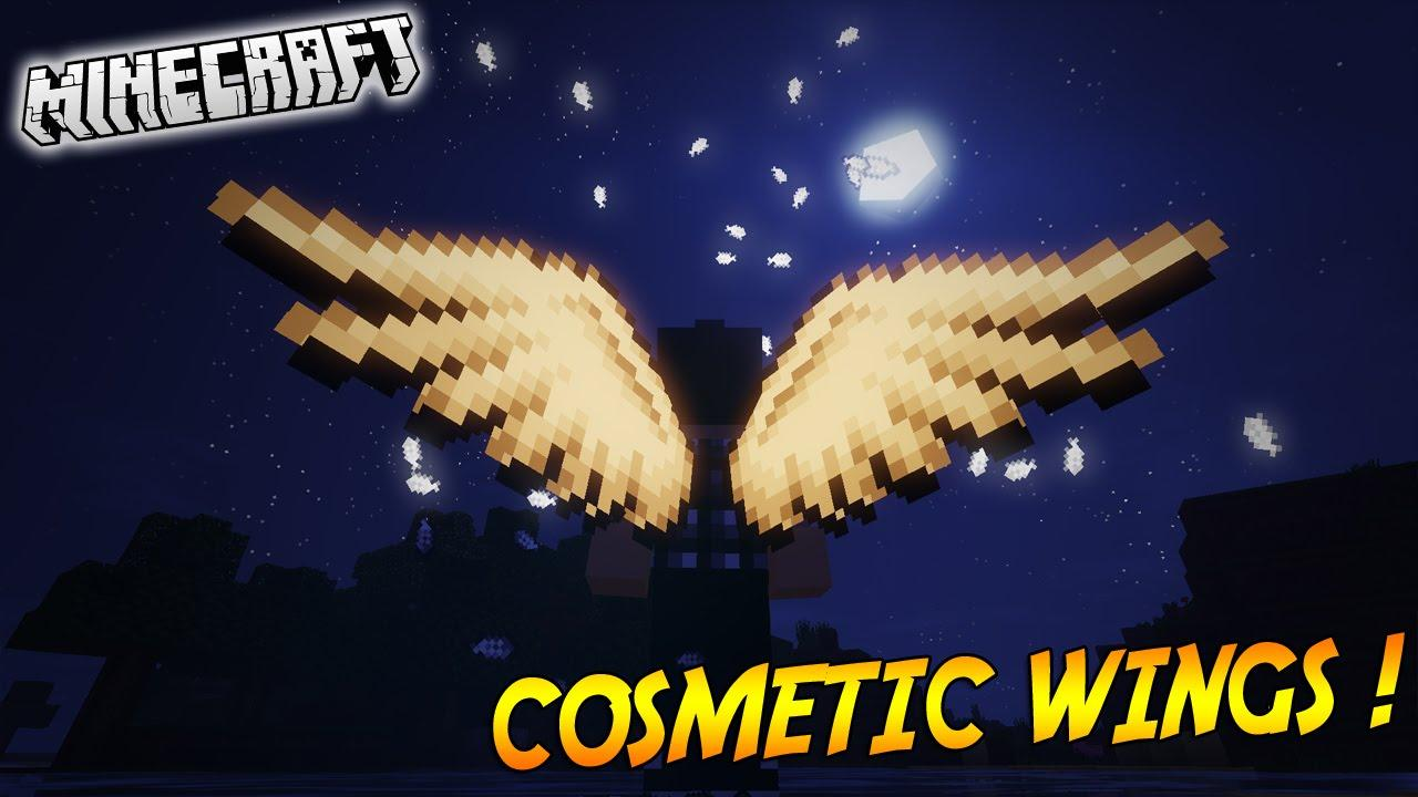 Cosmetic-Wings-Mod.jpg