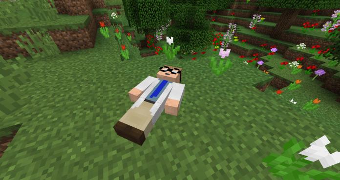 尸体 Corpse Mod
